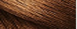 Vzorník barev Loreal Magic Retouch - 10 Chestnut