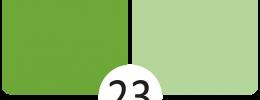 23 Kiwi