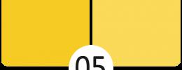 05 Slunečnice