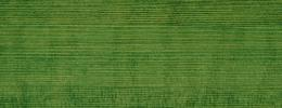 Vzorník barev Klumpp Hard Wax Oil olej-voskový prostředek na dřevo - myrtle green 112