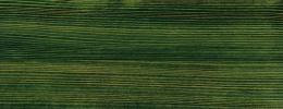 Vzorník barev Klumpp Hard Wax Oil olej-voskový prostředek na dřevo - dark green 548